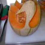 cigno di melone parte 3